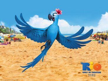 Jewel in rio movie-1024x768