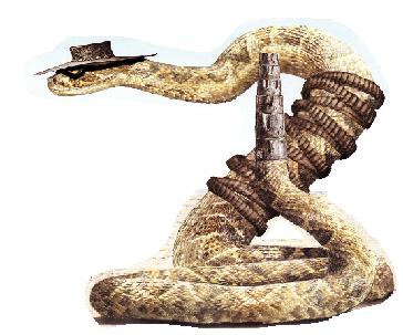 Rattlesnake Jake And Beans
