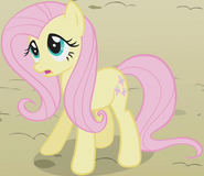 Fluttershy as an Earth pony