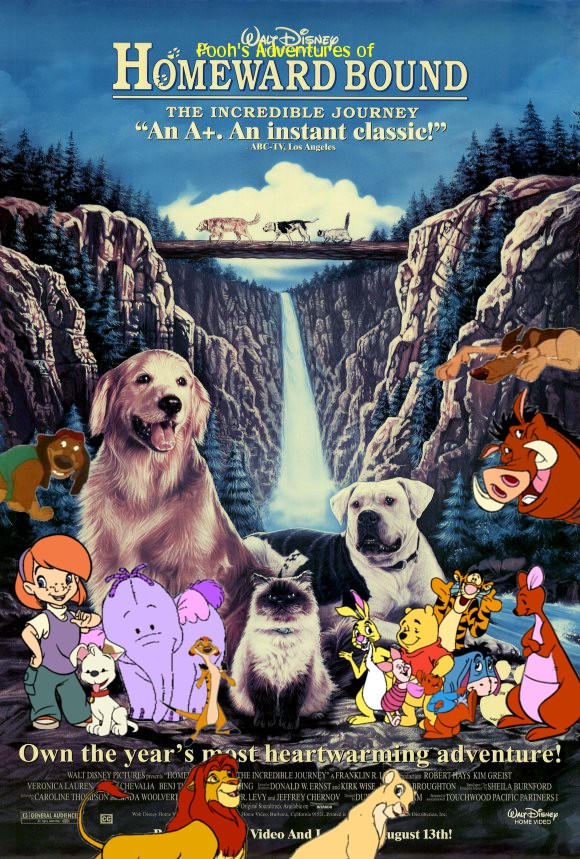 Pooh\'s Adventures of Homeward Bound: The Incredible Journey | Pooh\'s ...