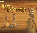 Meet the Ferrets/Transcript