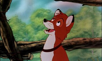 Tod as an Adult