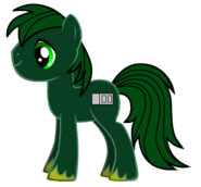 Paxton Pony