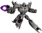 Megatron TP