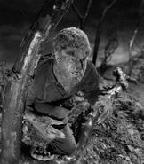 Larry Talbot (Werewolf Form 1941)