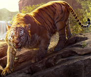 The Jungle Book 2016 Shere Khan Poster