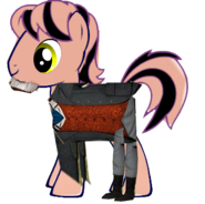 Sir Robert Norramby Pony