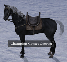 Champion Comet Courser