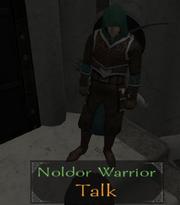 NoldorRangerGarb2