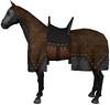 War horse brown