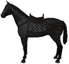 Saddle horse