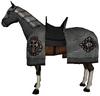 Aqs horse3