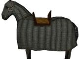 Desert War Horse