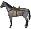Sumpter horse