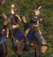 Knight of the Unicorn3
