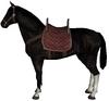 Hunting horse dark