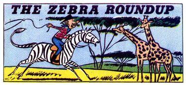 TheZebraRoundup-01