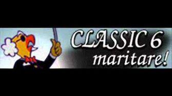 CLASSIC 6 「maritare!」