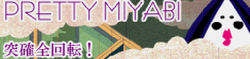 CS12 PRETTY MIYABI