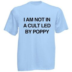 I AM NOT IN A CULT T-SHIRT ($25.00 USD)