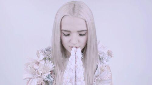 Pray with poppy