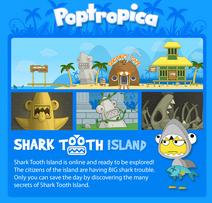 Tour shark