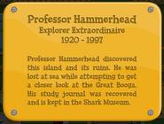 About Professor Hammerhead