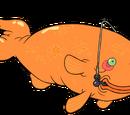 Żarłoczne Złote Rybki