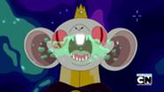 Krol szczur