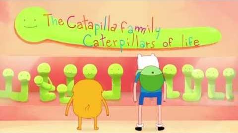 Adventure Time - Food Chain (Sneak Peek)