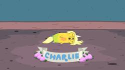 250px-Adventuretime pup charlie