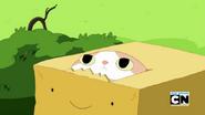 Pudełkowy Książę 5