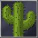 Cactus_Block