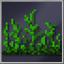 Jungle Grass