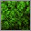 Vegetation Block