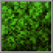 Vegetation_Block