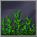 Jungle_Grass