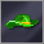 Green Stetson Hat