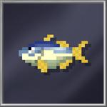 Kingfish_(Large)