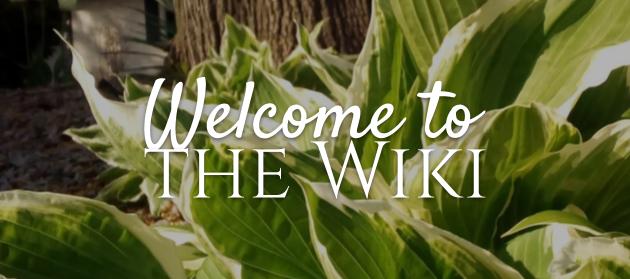 Welcometothewiki