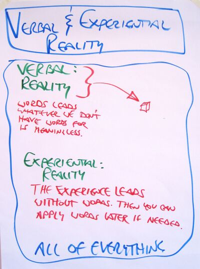 Map of Verbal and Experiential Reality IMG 1247