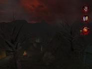 Ashen Forest 003