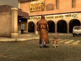Center for Doggie Domination