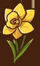 File:Yellow Daffodil.png