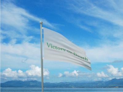 Green Mariner Flag
