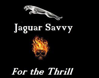 Jaguar savvy