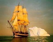 HMSFreedom