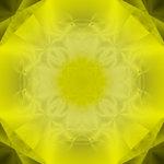 Yellow Eco