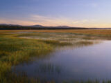 The Beautiful Land ( Arlia )