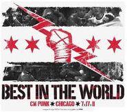 CM Punk Flag